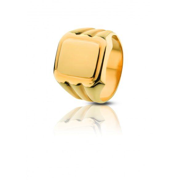 Arany pecsétgyűrű - 4101PG016F