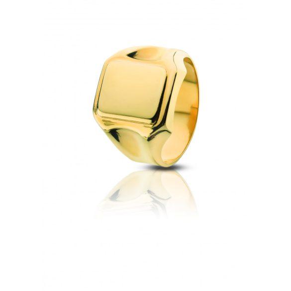 Arany pecsétgyűrű - 4101PG017F